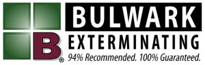 Bulwark Logo Wide 21 300x96 About
