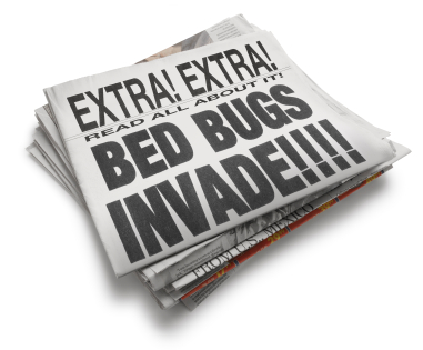 Bedbugs Invade Newspaper
