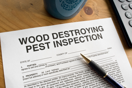 Wood Destroying Pest Inspection Document How to Understand Your Termite Inspection Report